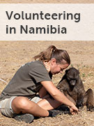 Namibia volunteering
