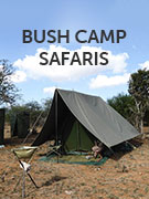 Bush camp safaris