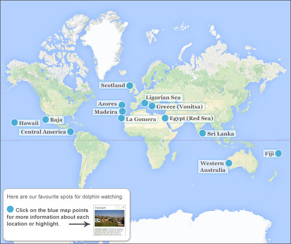 Best Place To Swim With Dolphins Travel Guide On Where To Swim With - Where have you been travel map