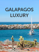 Galapagos luxury
