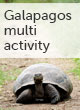 Galapagos multi activity