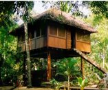Tourism greenwashing - a genuine ecolodge