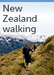 New Zealand walking