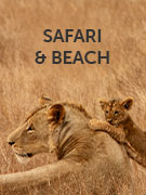 Safari & beach