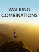 Walking combinations