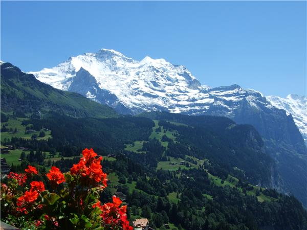 Swiss Alps walking holiday, Jungfrau Peaks & Glaciers walk