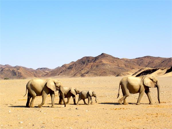 Namibia small group holiday