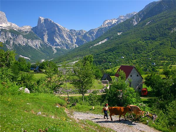 albanien 2019