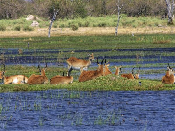 Botswana & Namibia adventure holiday, 13 days