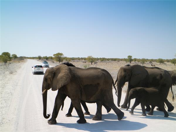 Namibia camping safari holiday