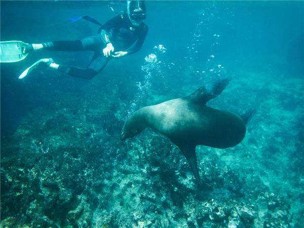 Galapagos land based adventure holiday