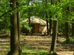 Ashdown Forest yurt accommodation, England
