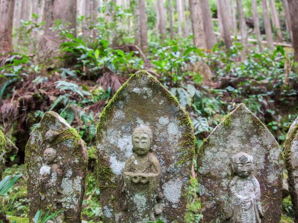 Kumano Kodo walking holiday, Japan