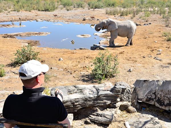Safari holidays  Wildlife & safari holidays  Helping Dreamers Do