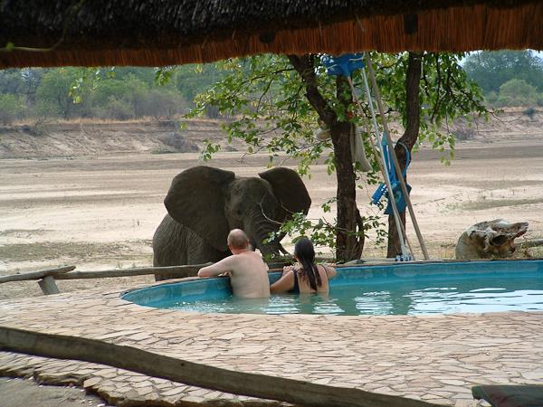 Safari adventure holiday, Zambia, Malawi and Mozambique