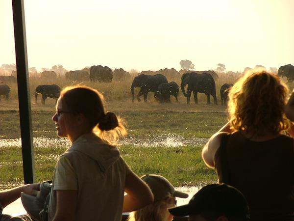 Zimbabwe & Botswana game tracker accommodated safari