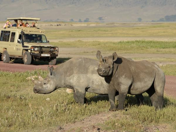 Tanzania national parks camping safari
