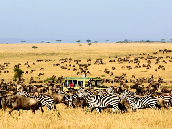 Tanzania lodge safari, Serengeti & Ngorongoro Crater