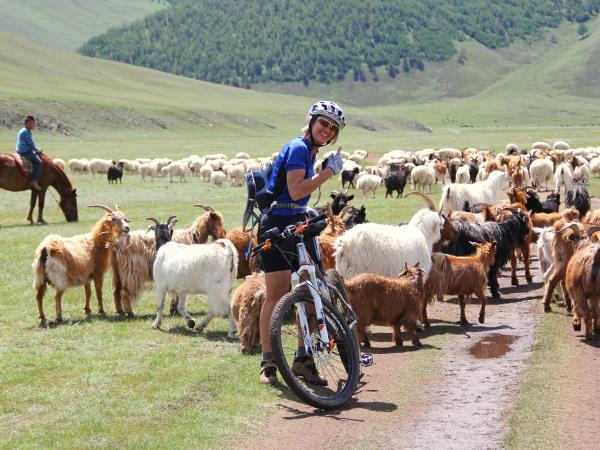 Mongolia cycling & mountain biking holidays