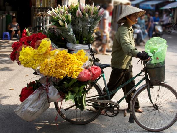 Vietnam tours, tailor made