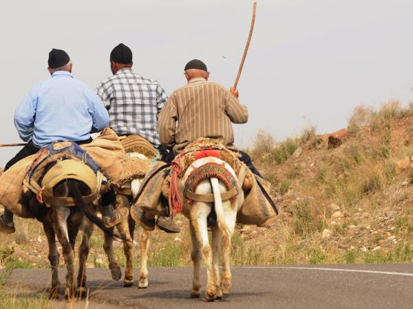 Silk Road holiday, around the Caspian Sea