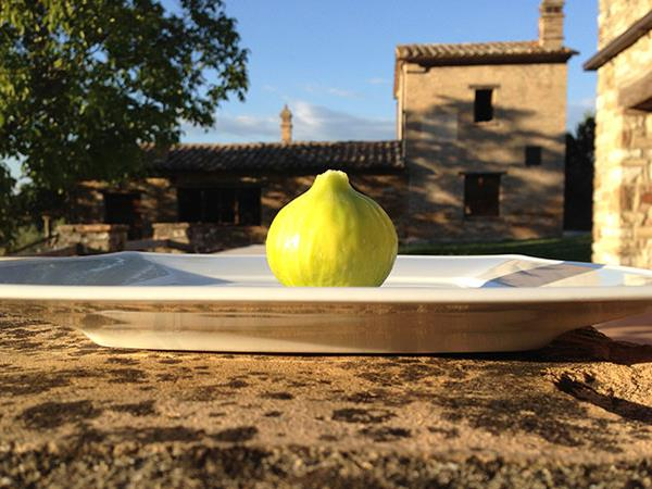 Umbrian self catering manor house, Italy