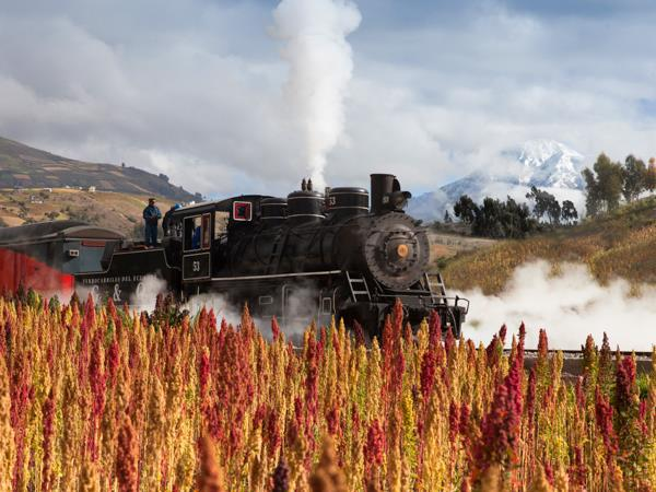 Ecuador railway holiday, culture and nature