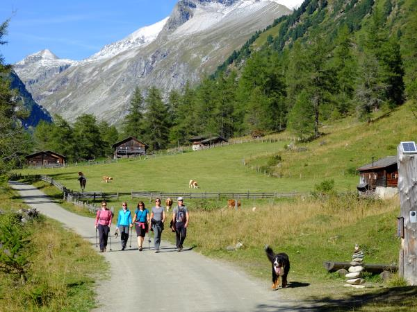 Austrian walking holiday