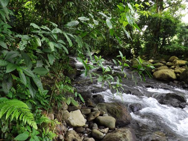 Costa Rica highlights holiday