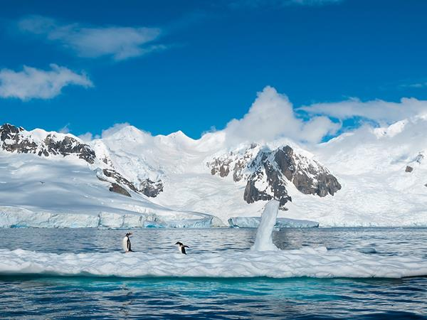 Antarctica, Weddell Sea Quest holiday