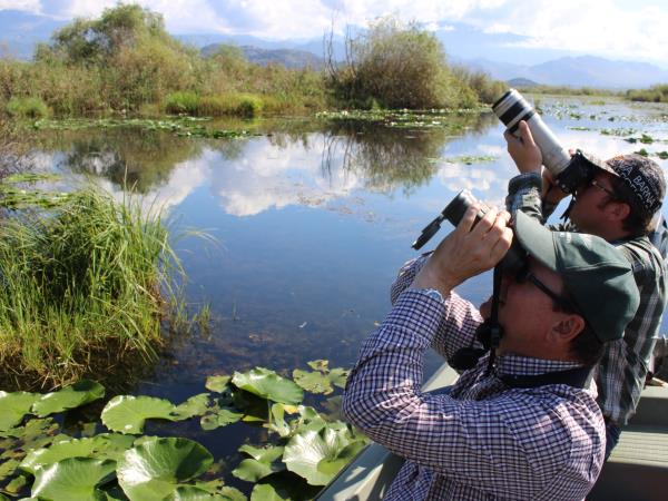 Montenegro bird watching holiday