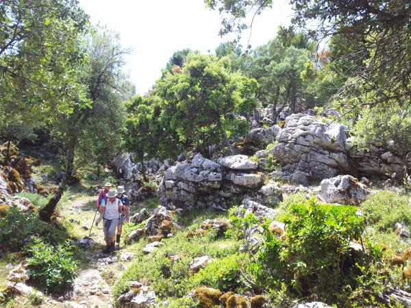 Grazalema self guided walking holiday, Spain