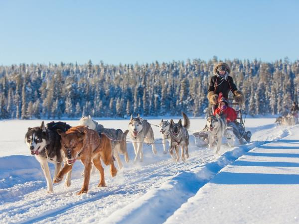 Lapland husky safari short break, Norway