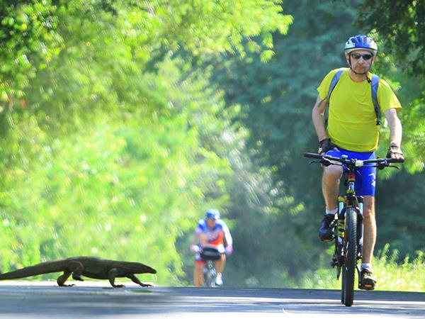 Sri Lanka highlights cycling holiday