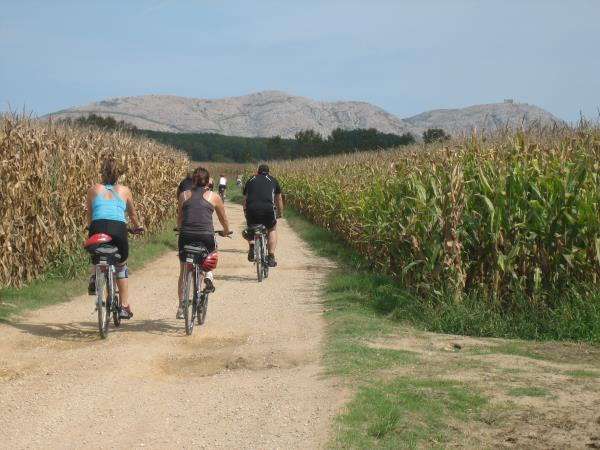 Budget cycling holiday in Spain