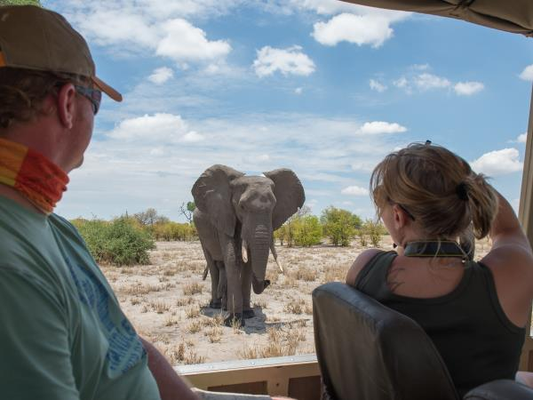 Botswana lodge & camping safari