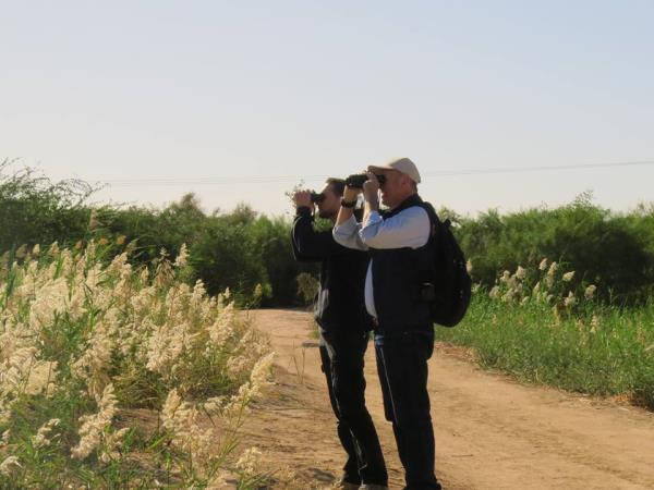 Jordan bird watching tour
