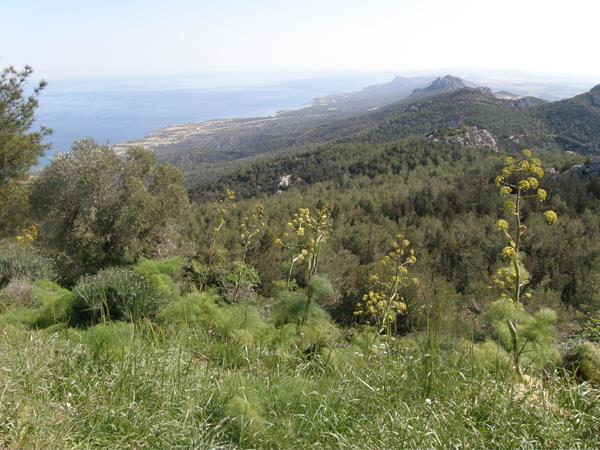 Cyprus walking holiday, Besparmak trail highlights
