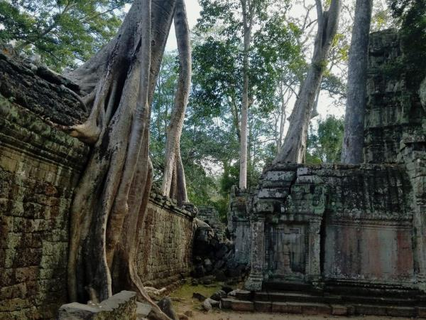Vietnam and Cambodia cultural tours
