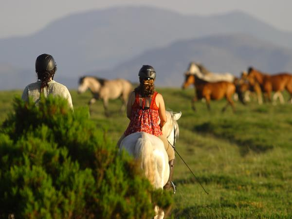 North Portugal horse riding holiday
