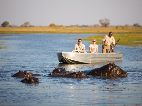Botswana wildlife adventure