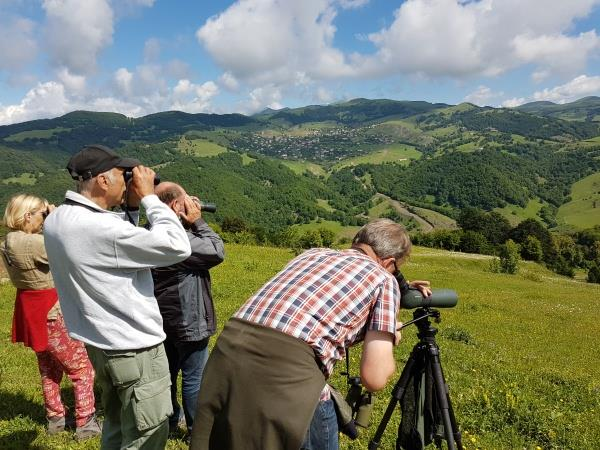 Armenia bird watching tour