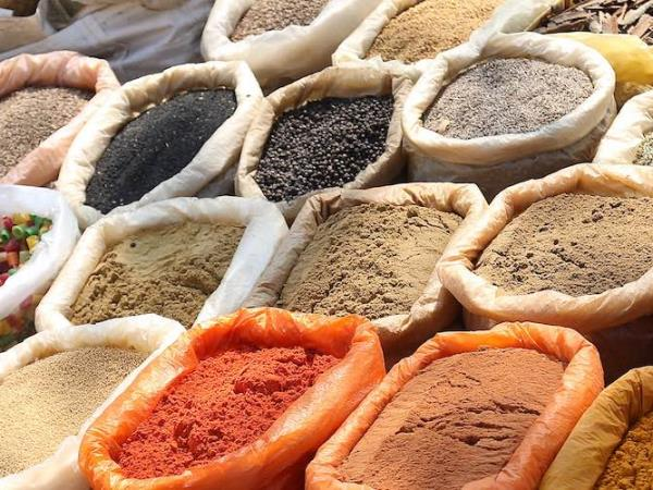 Taste of India culinary tour