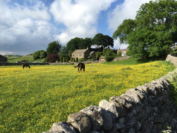 Yorkshire Dales self guided walking holiday, England