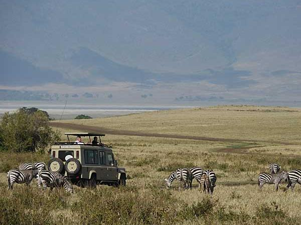Tanzania wildlife, people and beach holiday