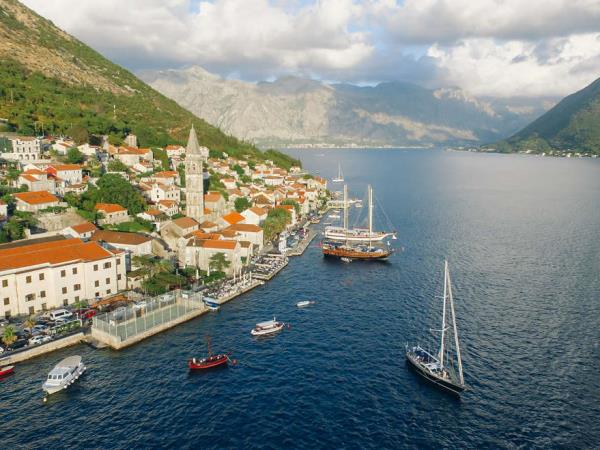 Dolphin watching holiday Montenegro to Turkey