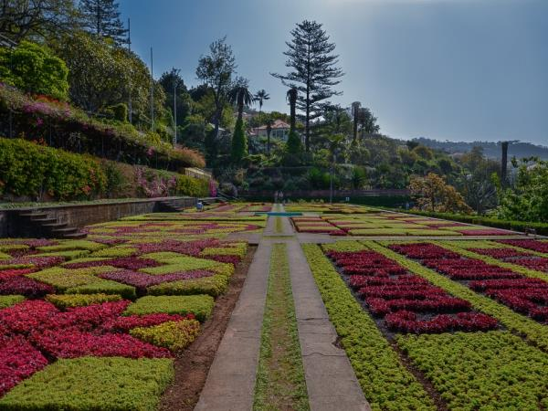 Madeira small group holiday, gardens & levadas