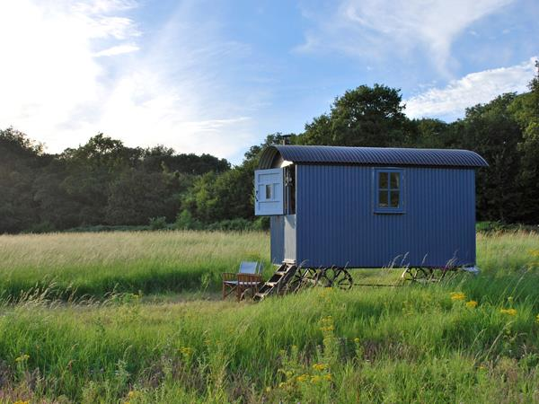 South Downs shepherds hut, sleeps 3, England