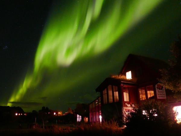 Northern Lights and whale watching holiday in Norway
