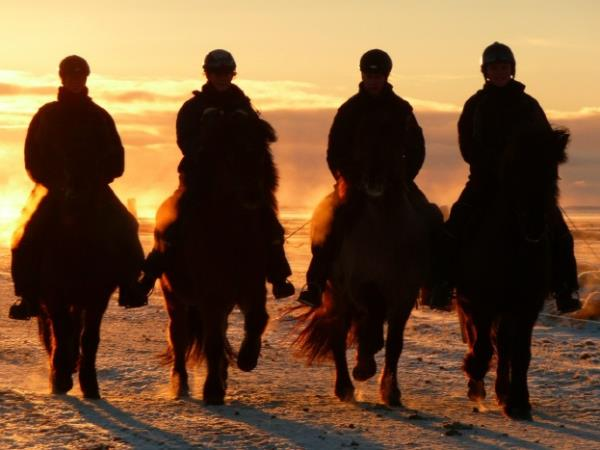 Iceland horse riding holiday